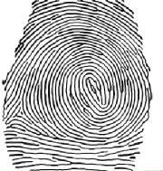 William Leo, Fingerprint Examiner